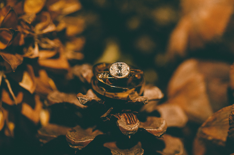 wedding ring pinecone lake placid lodge