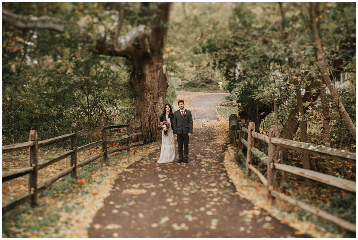 dreamy tree wedding portraits